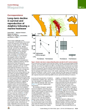 Long-term Decline in Survival and Reproduction of Dolphins Following a Marine Heatwave
